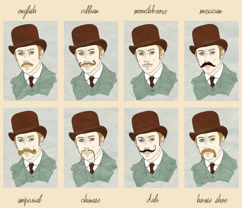 Différents types de moustaches