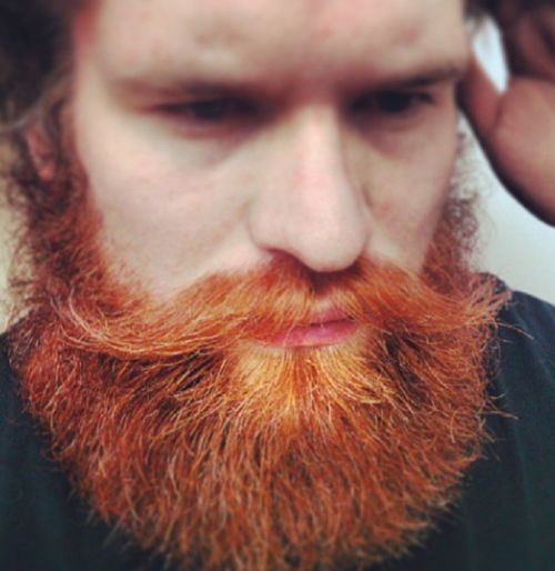 barbe-homme56