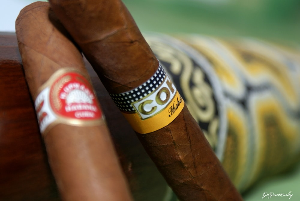 Histoire du cigare l 39 homme tendance for Barreau de chaise cigare