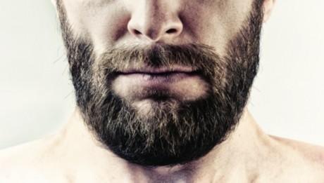 Greffe de barbe homme
