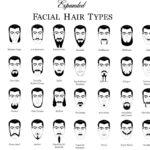 Les différents types de barbes