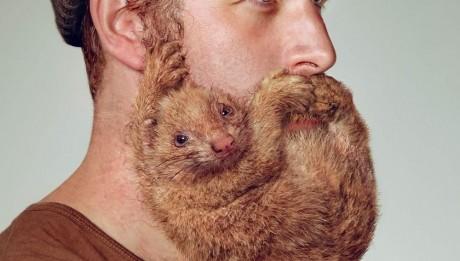 Votre barbe devient féroce, libérez votre peau!