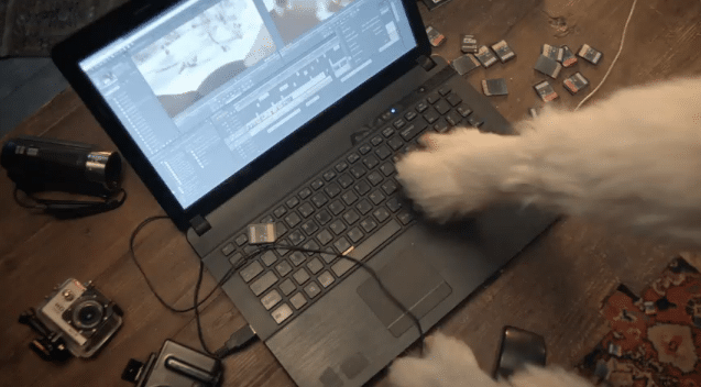 Film TomTom Bandit : La nouvelle cam' d'action connectée
