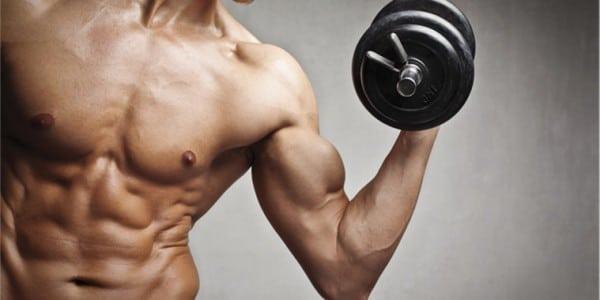 Les meilleurs exercices pour commencer la musculation
