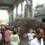 Pondichery, à la découverte de la ville franco-indienne