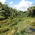 Bali : les incontournables