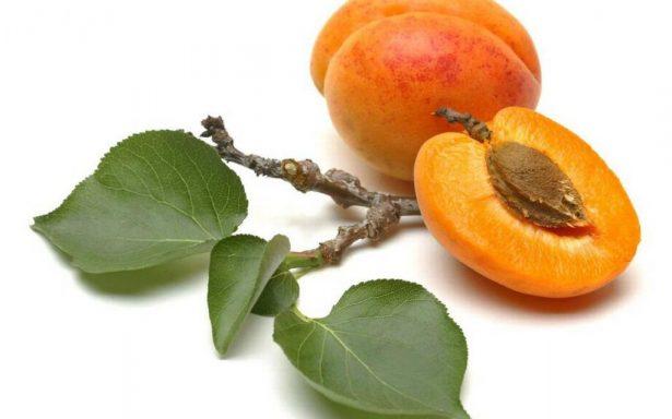 Huile de Noyaux d'abricot - comment faire son huile à barbe maison
