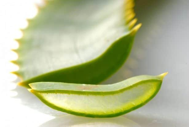 Jus d'Aloe Vera - Comment faire son huile à barbe maison