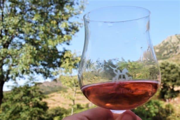 Le nectar de Jean-Jacques Oms au coeur de ses vignes - vins bio en roussillon