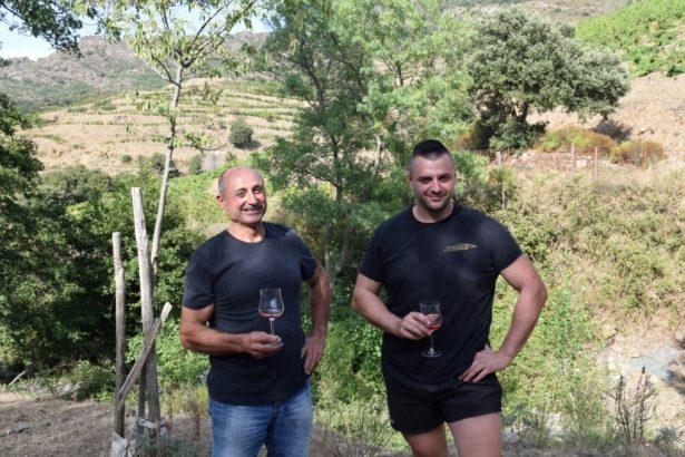 Le résultat d'un dur labeur dégusté à flanc de montagnes - vins bio en roussillon