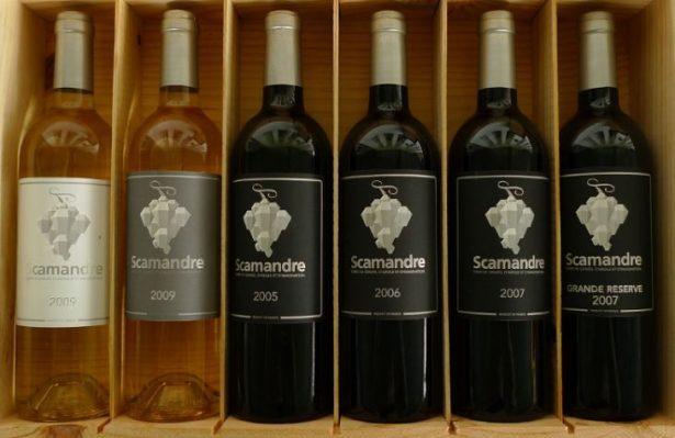 Dégustation de vins à la Table de Scamandre - Accord parfait Mets et Vins