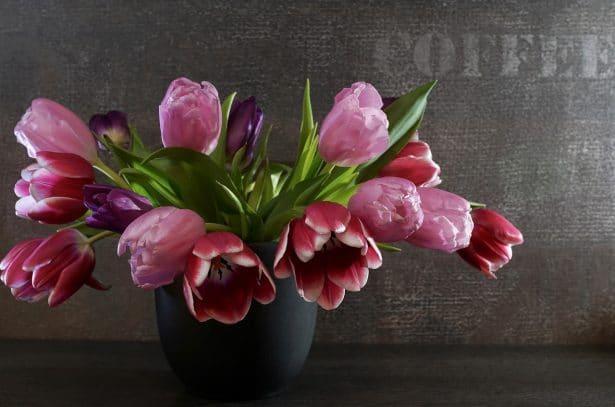 Un joli bouquet de tulipe