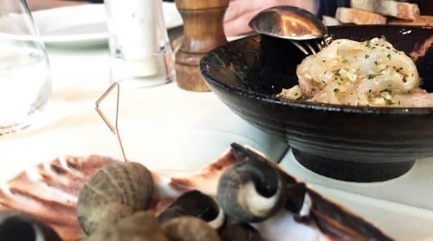Bigorneau et ceviche de daurade pour démarrer un bon repas chez Le Duc