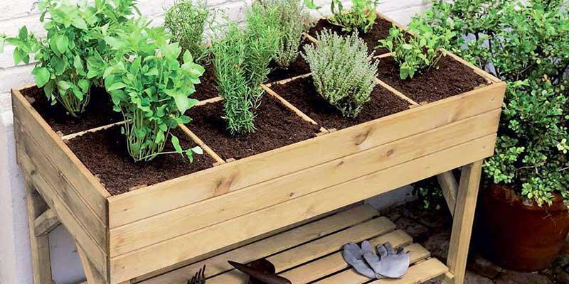 12 plantes et légumes à cultiver sur son balcon