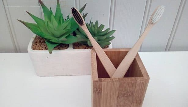 brosse-dent-bambou-pourquoi-choisir-615x431